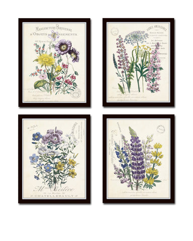 French Botanical Collage Print Set No. 2