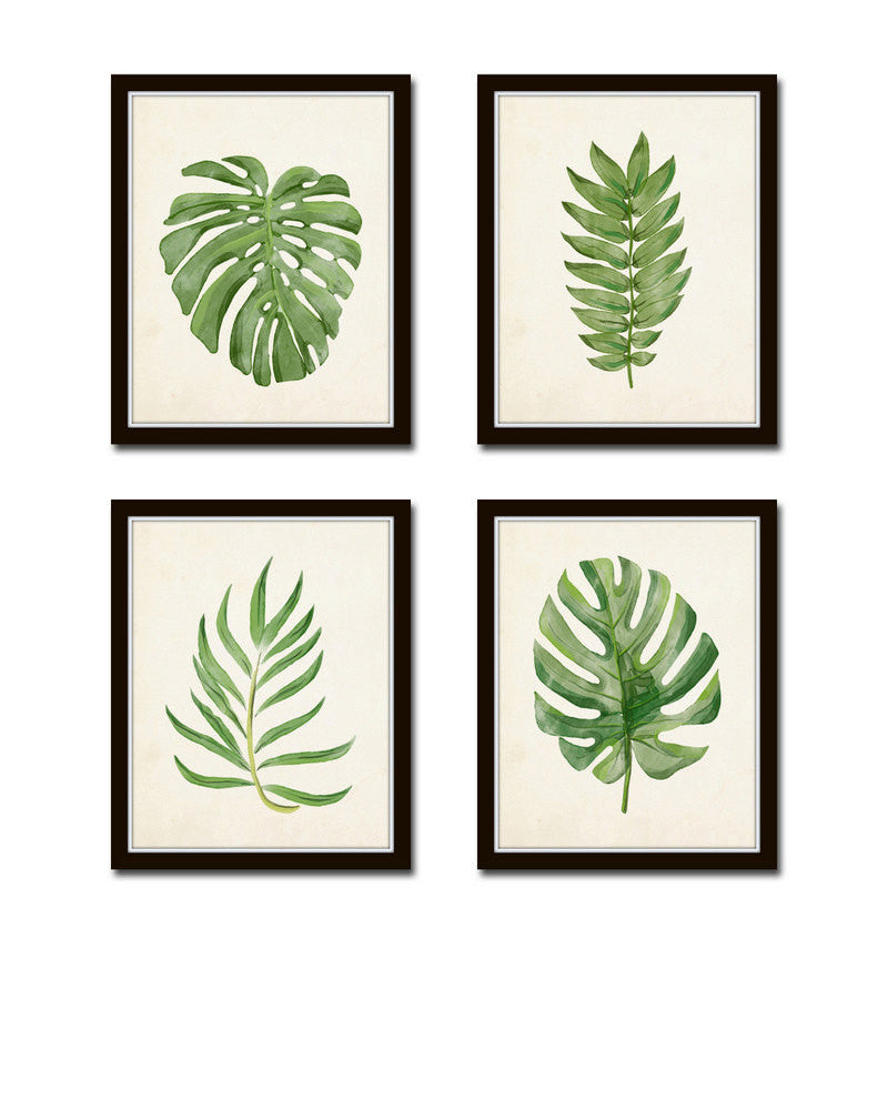 Watercolor Tropical Leaf Set No 2 Belle Maison Art Watercolor plants watercolor leaves simple watercolor tattoo watercolor watercolor animals watercolor tropical leaf palm print, showing various tropical plants together in one poster. watercolor tropical leaf set no 2
