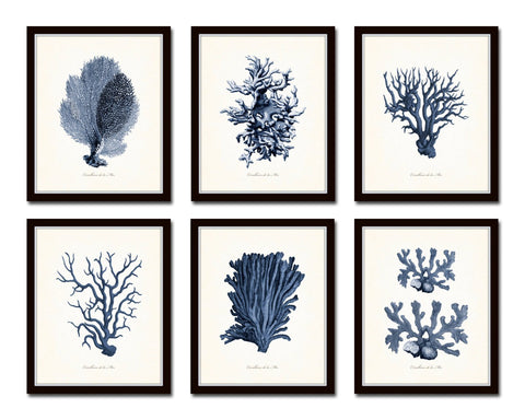 Blue Sea Coral Print Set No. 3