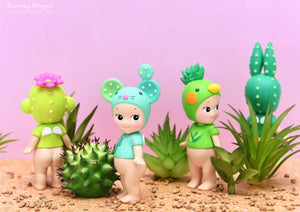 Cactus Series *Limited Edition*