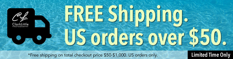 Free Shipping US orders over $50