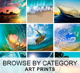 Art Prints - Browse by Categories