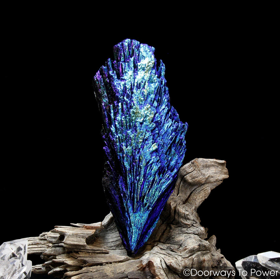 Aqua Aura Black Kyanite Crystal