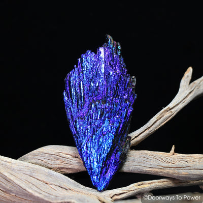 Magical Aqua Aura Black Kyanite Angel Wing Crystal