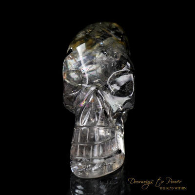 Black Tourmalinated Crystal Skull 'Ancient Code'
