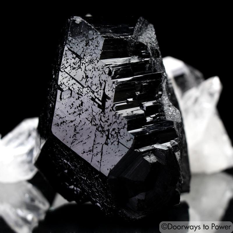Black Tourmaline Etched Record Keeper Crystal Cannon