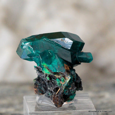 Amazing Dioptase Specimen Double Terminated  A +++  Museum Quality