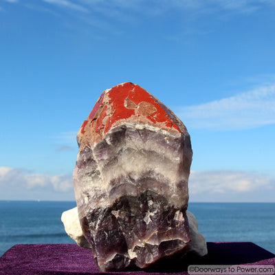 "Amazing 8"" Auralite 23 Crystal w/ Red Tip Like Super 7 Melody Stone 5 lbs"
