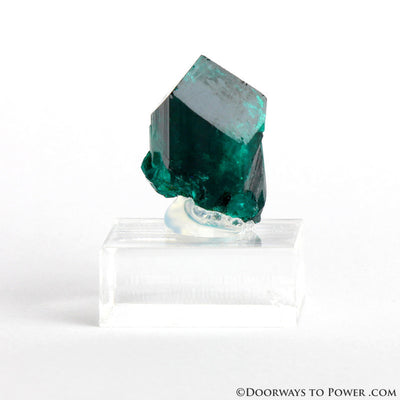 Dioptase Prosperity Crystal Specimen A +++ Museum Quality - NAMBIA