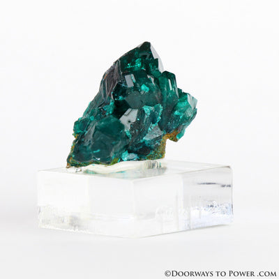 Dioptase Mineral Specimen A +++ Collectors Quality