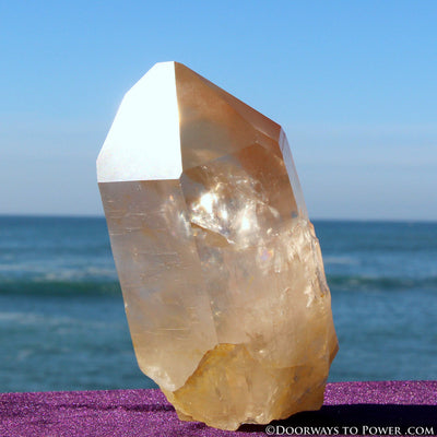 "XL Pink Seed Lemurian Crystal Point ""Wisdom of Ancient Lemuria"" Starbrary RESERVED for MT"
