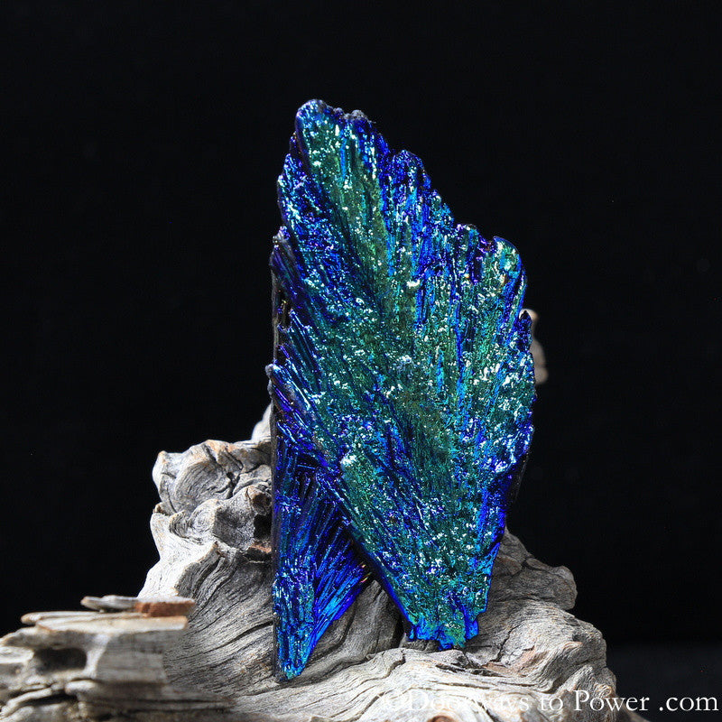 Powerful Black Kyanite Aura Crystal A +++