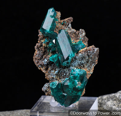 Amazing Dioptase Mineral Specimen Twin 'Museum Quality'