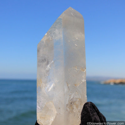 "reserved for MT - XL 10.25"" Lemurian Seed Quartz Pleiadian Starbrary Record Keeper Phantom Crystal Point"