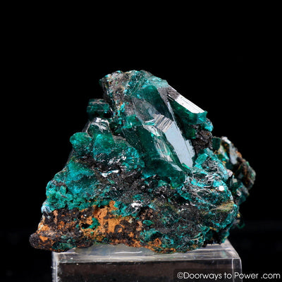 Dioptase Mineral Specimen A ++ 'Collectors Quality'
