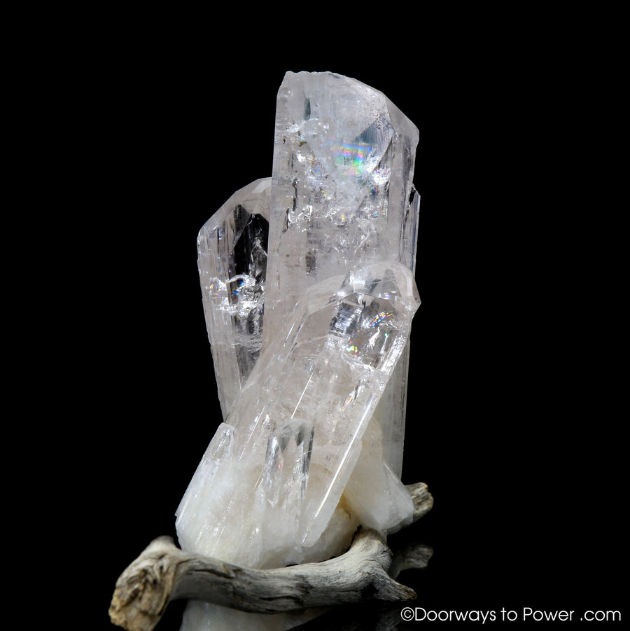 "Danburite Synergy 12 Tantric Twin Manifestation Crystal ""Angelic Spirit"""