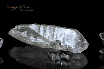Leandro De Souza Crystal Carvings