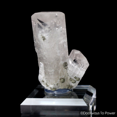 Danburite Synergy 12 Stone Twin Crystal Specimen Pyrite