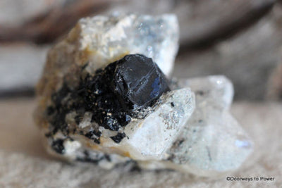 Black Tourmaline w/ Quartz