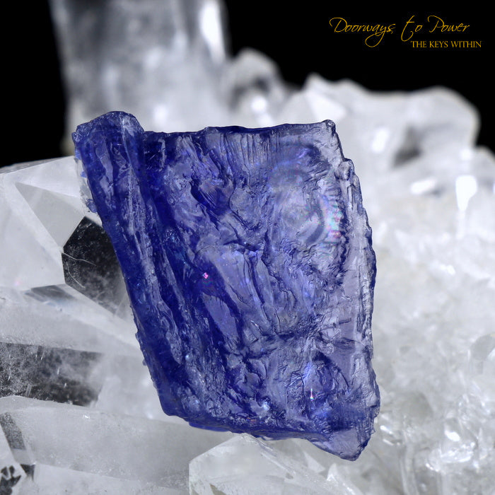 Tanzanite Dragon Crystal Carving