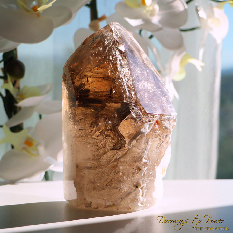 Elestial Smoky Citrine Quartz Crystal Point 'Portals of Ancient Knowledge'