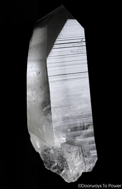 Black Phantom Lemurian Record Keeper Quartz DOW Crystal