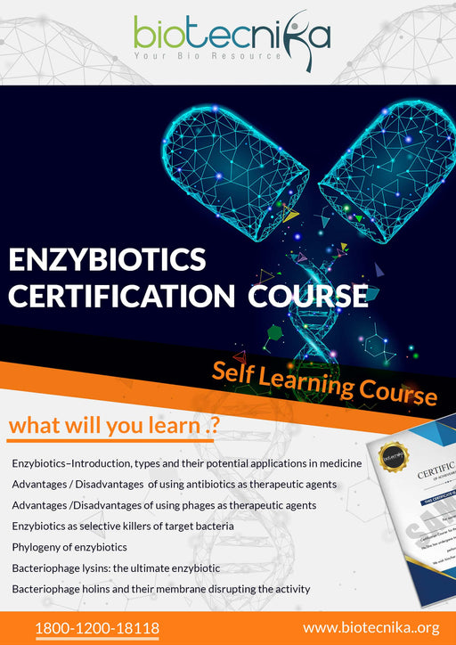 Enzybiotics Certification Course - Antibiotic Enzymes as Drugs and Therapeutics