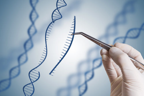 CRISPR Technology Basics Certification Course