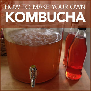 Kombucha Recipe