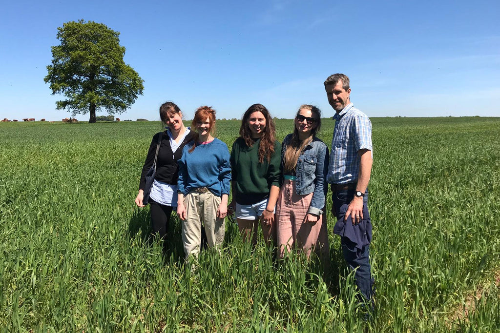Greenacres Farm first field-scale YQ Wheat away from Wakelyns