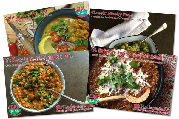 Hodmedod's Dal Recipe Cards - Hodmedod's British Pulses & Grains