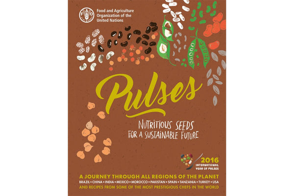 Pulses: Nutritious Seeds for a Sustainable Future - Hodmedod's British Pulses & Grains