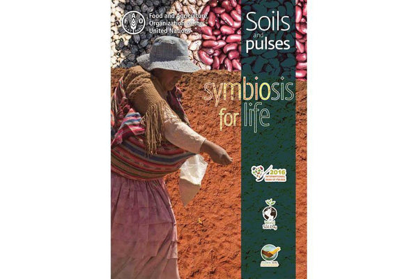 Soil and Pulses, Symbiosis for Life - Hodmedod's British Pulses & Grains