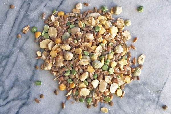 Mix #1 - Broth - SHORT-DATED BARGAIN! 25% OFF - Hodmedod's British Pulses & Grains