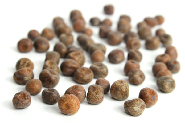 Black Badger Carlin Peas, Organic - Hodmedod's British Pulses & Grains