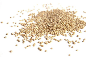 British Quinoa, Wholegrain - Hodmedod's British Pulses & Grains