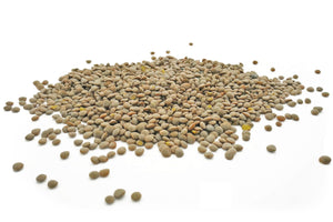 Olive Green Lentils from Sussex, Organic - Hodmedod's British Pulses & Grains