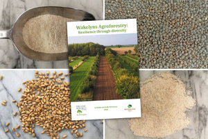 The Wakelyns Bundle - Hodmedod's British Pulses & Grains
