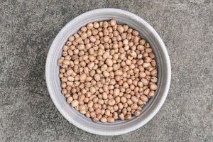 Whole Fava Beans, Organic - Hodmedod's British Pulses & Grains