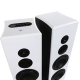 Limitless Creations  Floorstanding Speakers