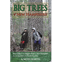 Big Trees of New Hampshire