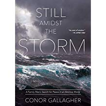 Still Amidst the Storm A Family Man's Search for Peace in an Anxious World Conor Gallagher (Paperback)