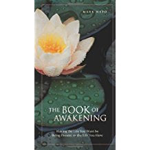 The Book Of Awakening : Having the Life You Want by Being Present to the Life You Have Mark Nepo ( Paperback )