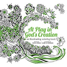 At Play in God's Creation: An Illuminating Coloring Book Tara M.Owens (Paperback)