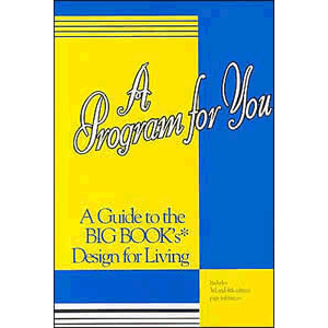 A Program for You - A Guide to the Big Book's Design for Living <br>Carolyn Barnes (Paperback)