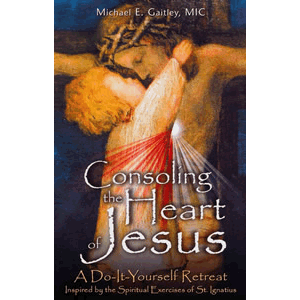 Consoling the Heart of Jesus - A Do -It -Yourself Retreat <br>Michael Gaitley (Paperback)