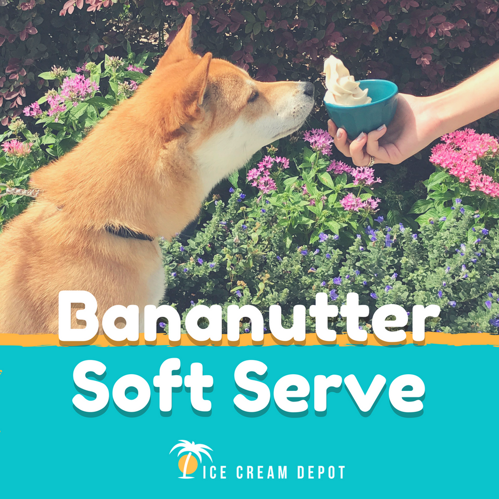 Pet Friendly Bananutter Frozen Yogurt