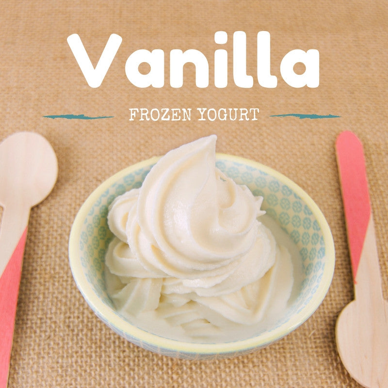 Vanilla Frozen Yogurt Recipe
