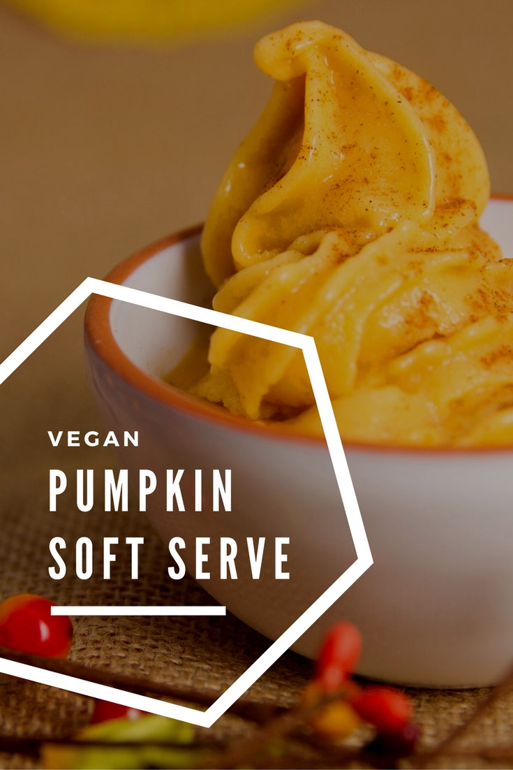 Vegan Pumpkin Soft Serve Ice Cream Recipe
