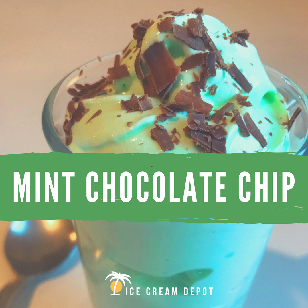 Mint Chocolate Chip Soft Serve Ice Cream